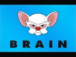 Pinky-And-The-Brain-Flag-Wallpaper-1600x1200