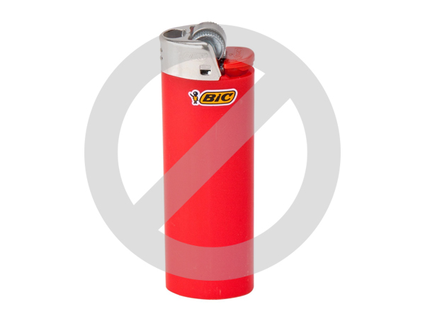 disposeable-lighters-bic-ban-environment-plastic-davesgeekyideas